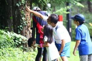 summercamp113